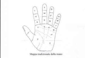 immagine delle dita di una mano