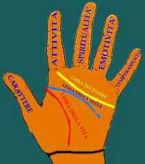 immagine che descrive il significato delle dita della mano